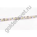 Светодиодная лента 12V 5050 60/м (14,4W/м) IP 20 Холодная