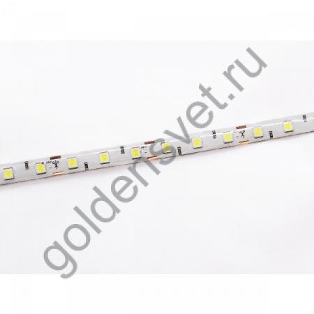 Светодиодная лента 12V 5050 60/м (14,4W/м)в силиконе Тёплая